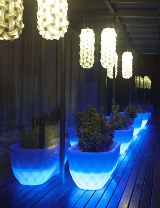 outdoor potted plants with LED lights